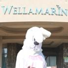 Húsvét íze - Hotel Wellamarin, Zamárdi