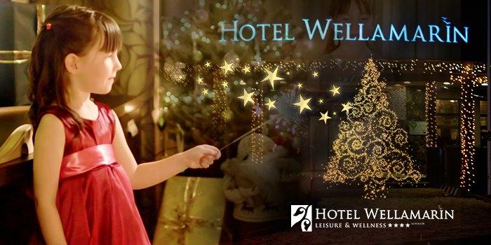 Hotel Wellamarin****, Zamárdi